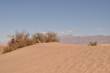 Sand dunes... They shot Star Wars here!